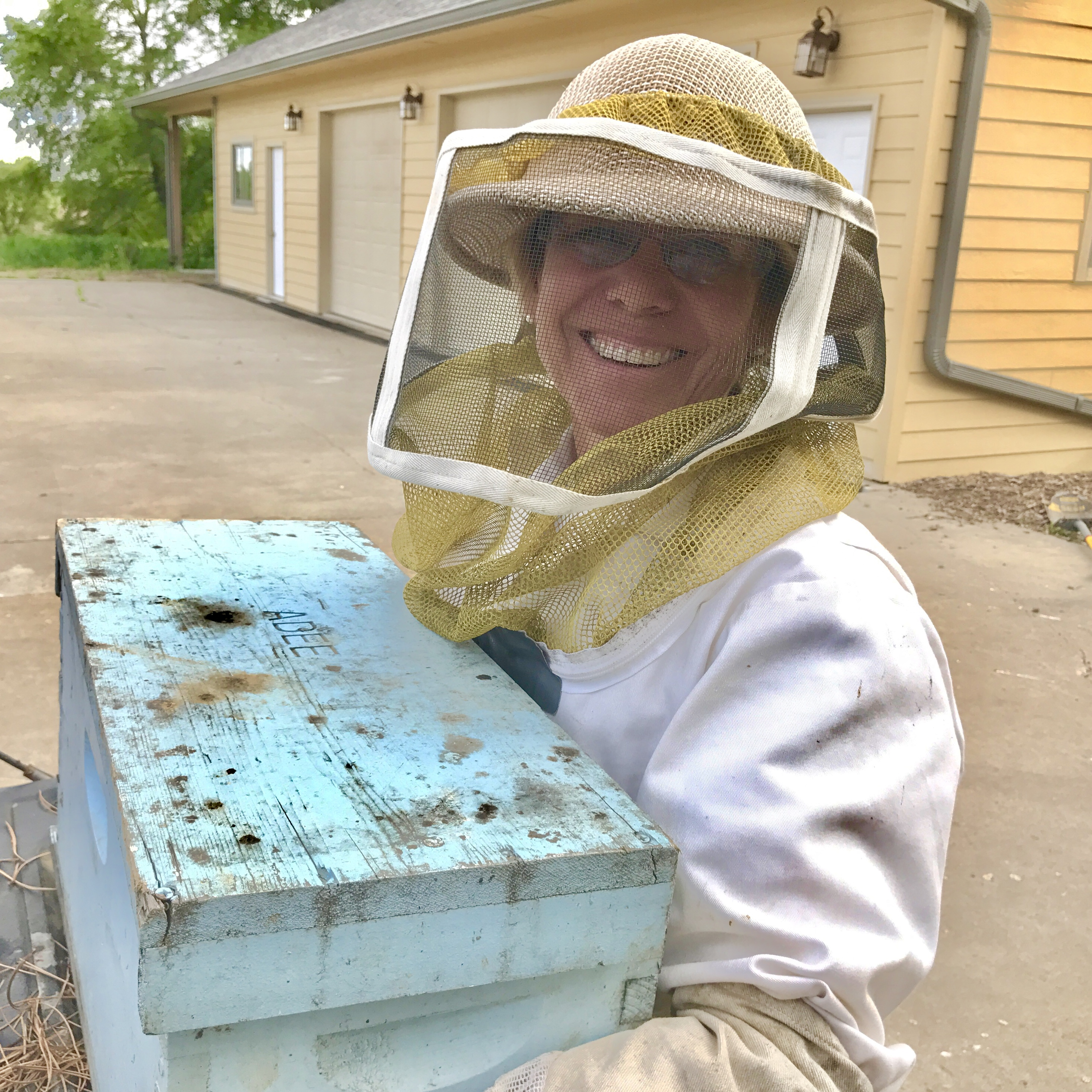 four steps to harvest honey at home u2013 glean for good