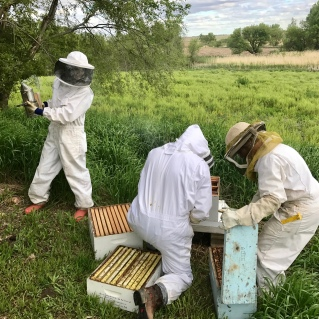 I am doing absolutely nothing apart from smoking the air :) Meanwhile Scott and Ali assemble the hive