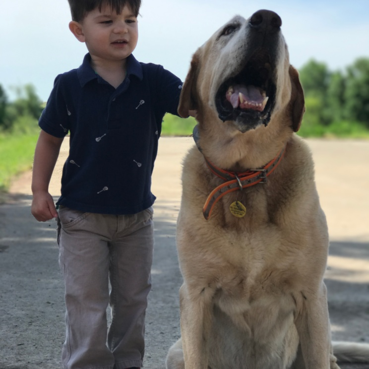 My nephew Broderick and our Labrador, Chase